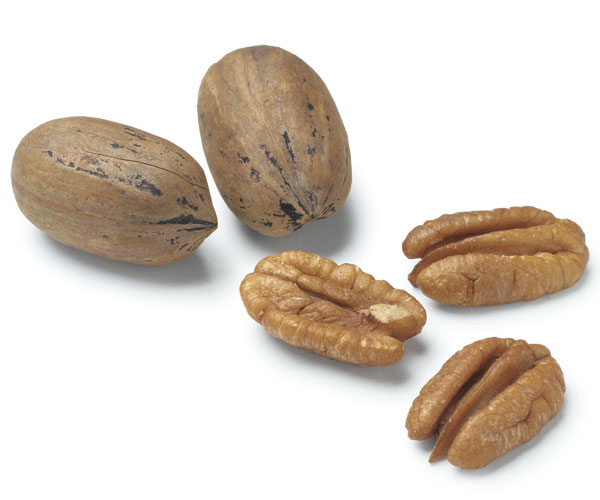 Winter Cooking Showcases Nuts Article Finecooking